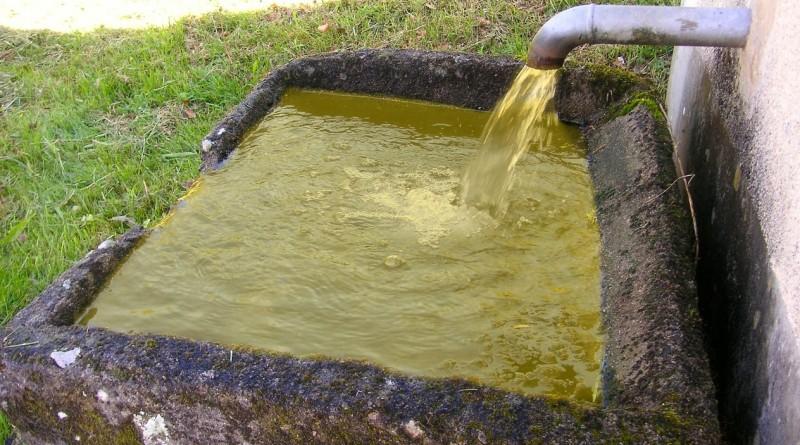 water-trough-338382_1280